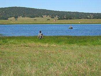 Main pond at Kistler