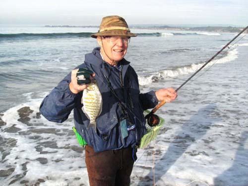 Mike Gets a Barred Surfperch